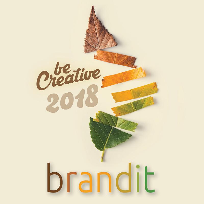 BranditCool-2018.jpg