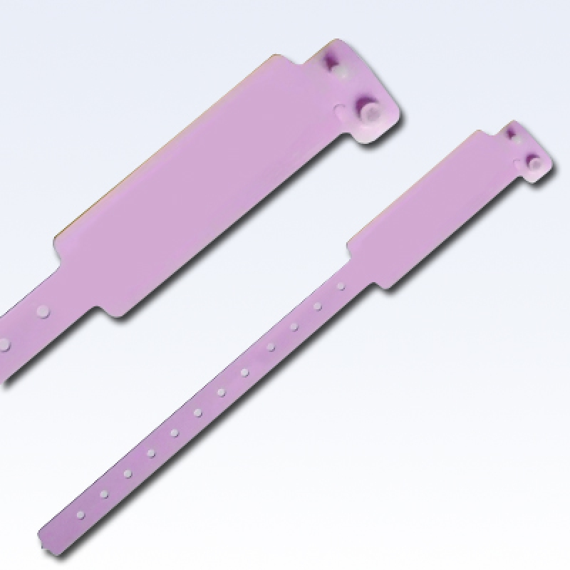 pink_+copy.jpg